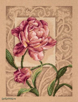 Graceful Tulip 35239 /  Изящный Тюльпан