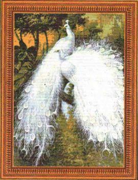 White Peacocks 2 95183 / Белые павлины
