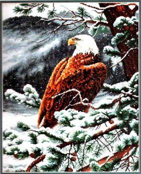 Eagle's Eye View 35117 / С Высоты Орлиного Полёта