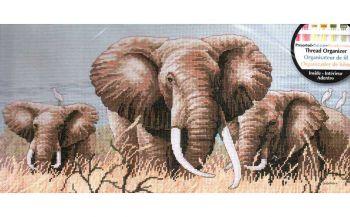 Power of the Serengeti 35012 / Сила спокойствия