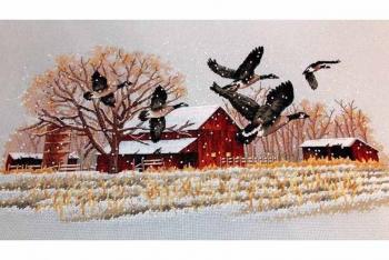 Winter Geese 13732 / Зимние гуси