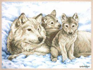 Mother Wolf and Pups 131300 / Волчица и Волчата