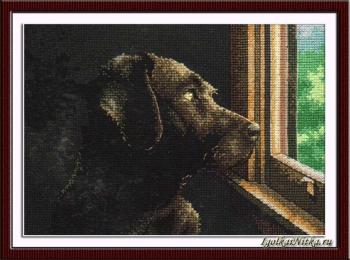 Pondering  Pup 70-65104 / Ждущий щенок