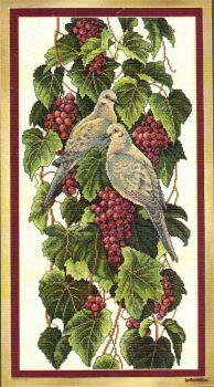 Vineyard Doves 03247 / Голуби На Винограднике