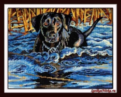 Cold Water, Warm Heart 20071 / Холодная вода и горячее сердце