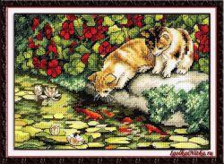 Kitten Reflections 65071 / Отражения котят