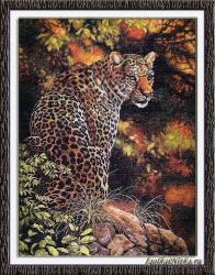 Leopard's Gaze 35209 / Пристальный взгляд леопарда