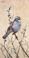 Willow Branch 03.011.08 / Ветка вербы