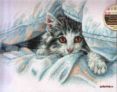 Cat Comfort 70-35341 / Уютное место кошки