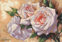 White Roses 35247 / Белые розы
