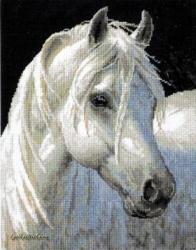 Gentle Strength 12165 / Белая лошадь