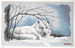 Wolf in Snow  35123 / Волк на снегу