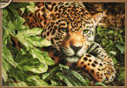 Leopard in Repose 70-35300 / Леопард на отдыхе