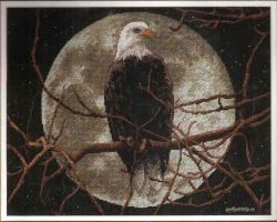 Eagle in Moonlight 13688 / Орел в Лунном свете