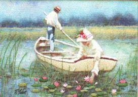 Waterliliies 6177 / Кувшинки