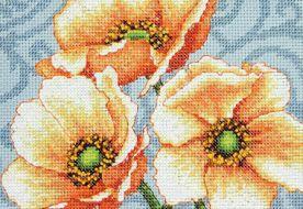 Windflowers mini 70-65139 / Анемоны