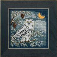Snowy Owl MH14-4304 / Полярная сова